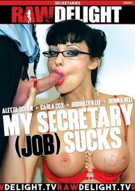 My Secretary Job Sucks